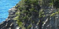 09-Kuestenwanderung-Sao-Miguel