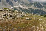 02-Alpinwelt_Bulgarien_Georgi_Palahutev