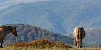 01-Balkan-Gebirge