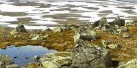 06-hardangervidda